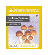 Golden Teacher - Fiala di coltura